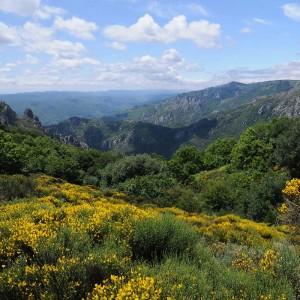 Parc du Haut Languedoc